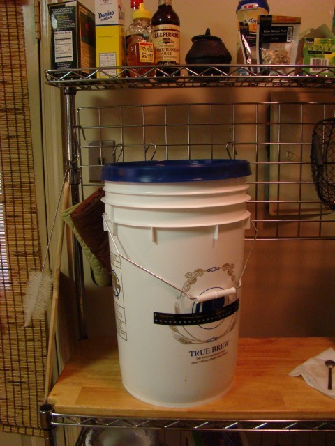 Fermenting bucket, on the counter